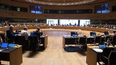 EU Council 1 Copyright Directive