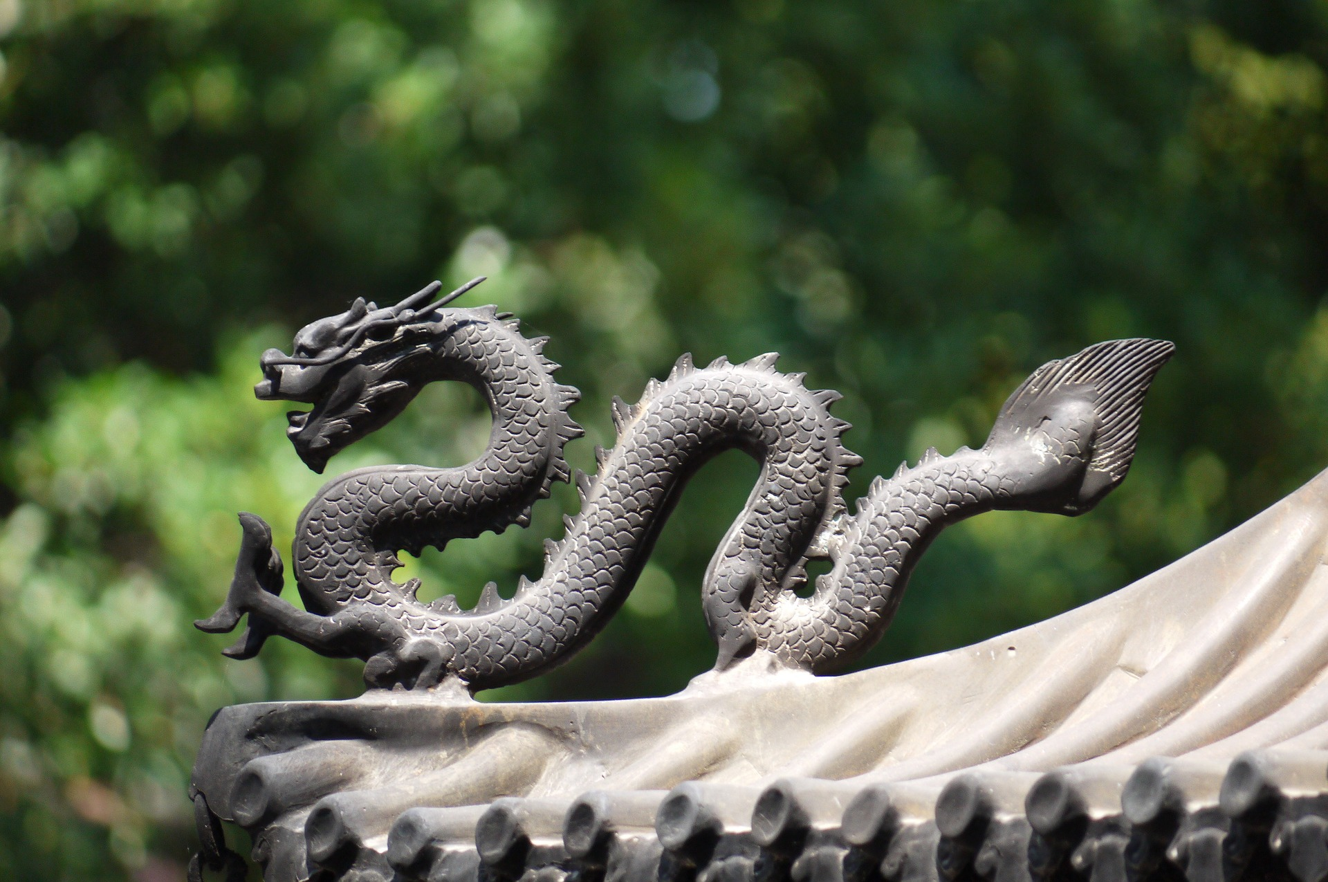 china-dragon