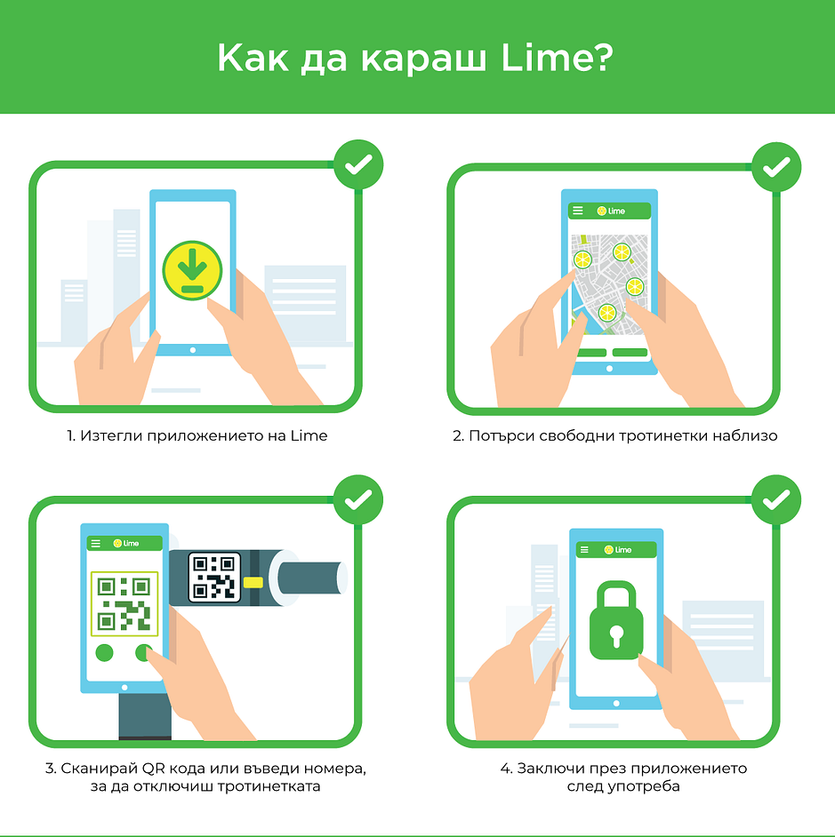Lime-infographic