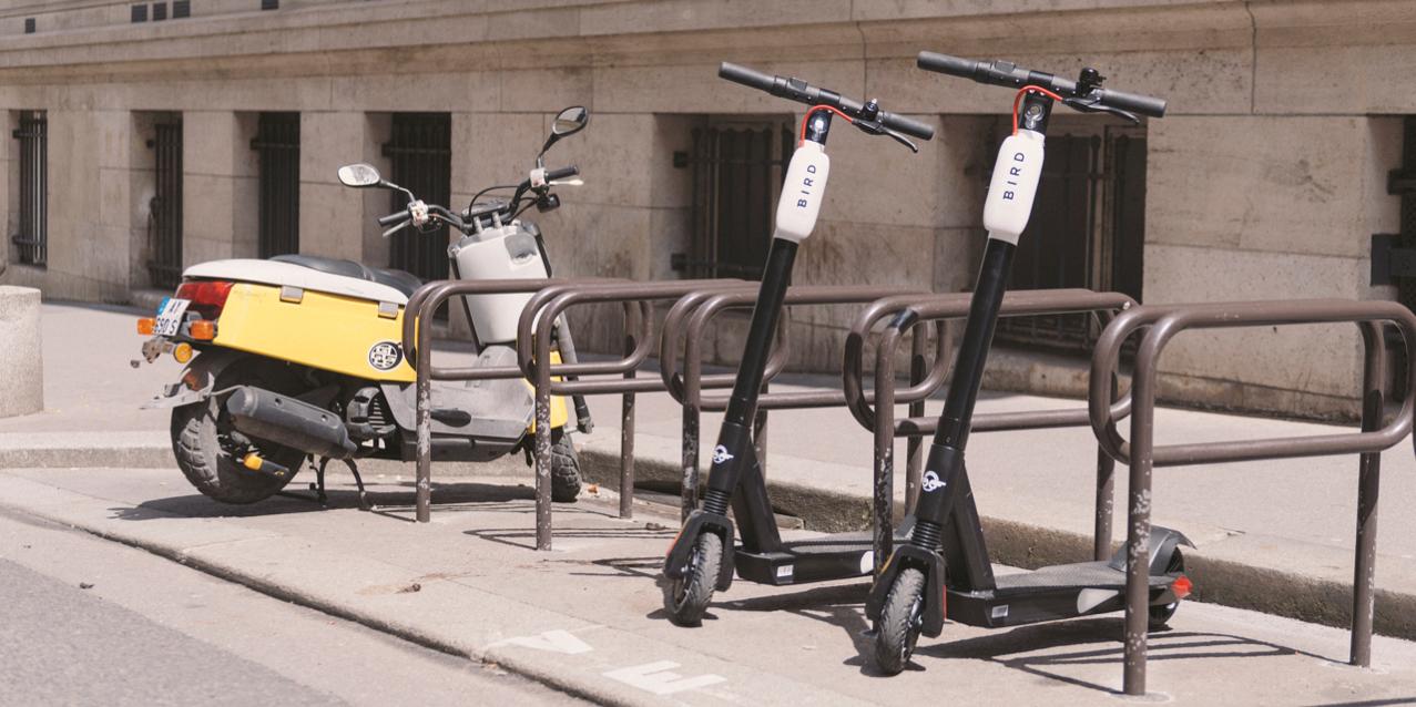 bird-scooter-1