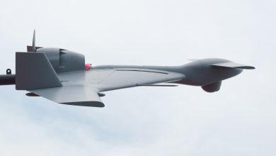 Photo of Блуждаещият полет на Harpy